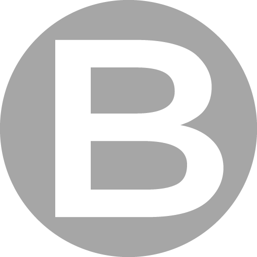 Logo_Berlaz_B_Gris
